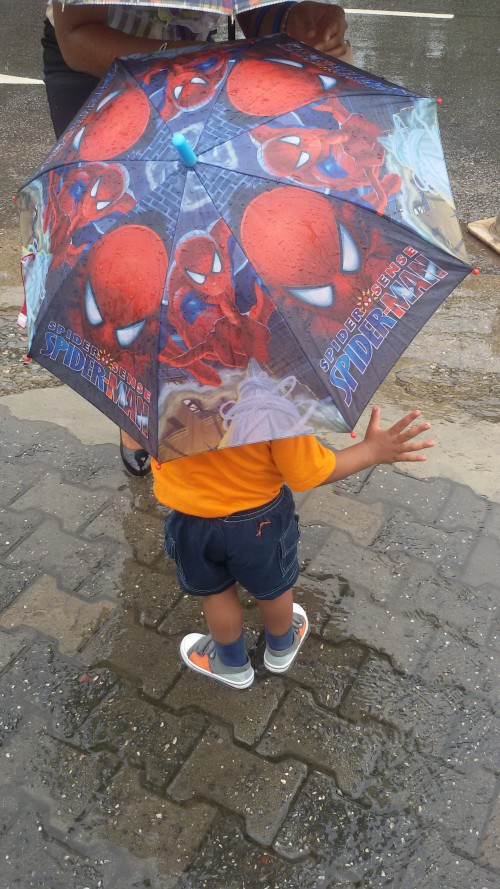 Alvin & His Spiderman Umbrella
